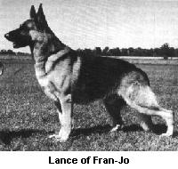 Lance of Fran-Jo